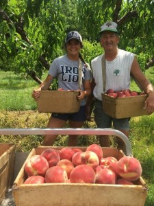 Have Fun and Pick Your Own Peaches & Apples at Catoctin Mountain Orchards in Frederick & Hagerstown, MD