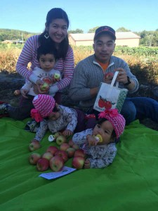 Pick Your Own Apples from the Orchard or Stop by the Bakery in Hagerstown MD